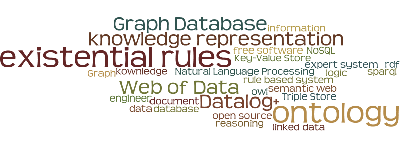 ontology, knowledge representation, rule based system, expert system, rdf, owl, Datalog+, logic, database, NoSQL, Graph Database, Triple Store, Key-Value Store, engineer, semantic web, Web of Data, linked data, document, data, information, kownledge, Natural Language Processing, Graph, reasoning, sparql, existential rules, open source, free software